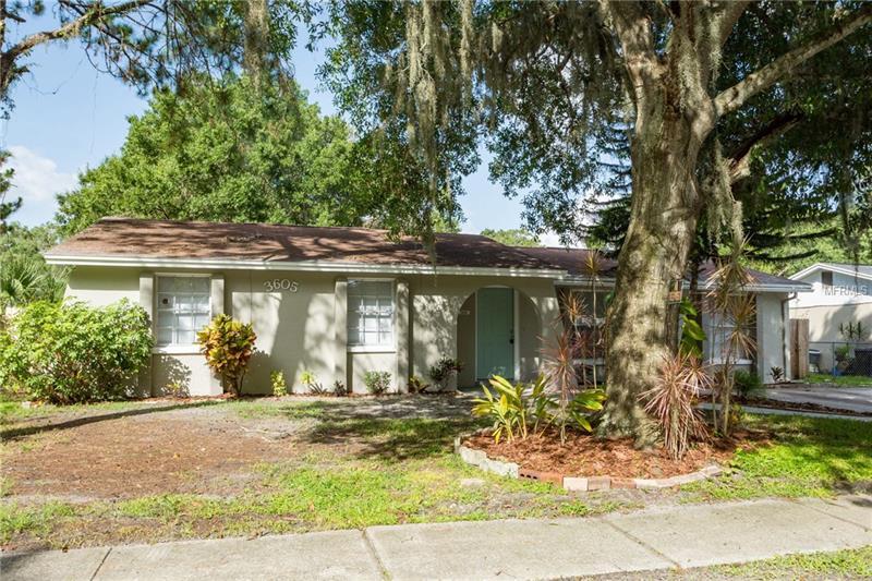 3605 PATINA DR TAMPA, Florida 33619