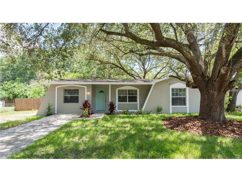3517 LIBBY LOOP TAMPA, Florida 33619