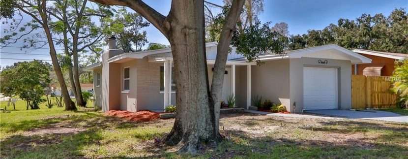 1333-WOODBINE-ST-CLEARWATER-Florida-33755-14